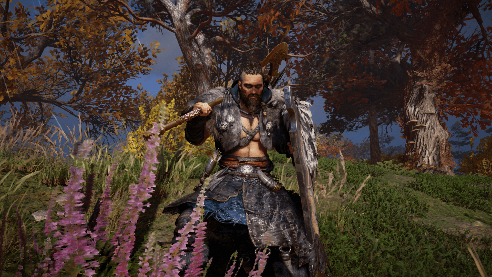 Assassins Creed Valhalla 9